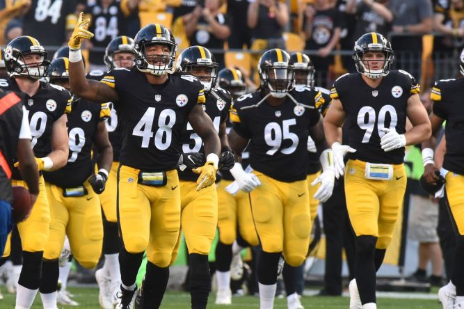 NFL steelers 2017 defense